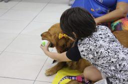 Terapia com cães é retomada pela Sejusc para crianças PcDs