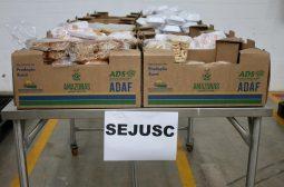 Alimentos regionais repassados à Sejusc vão beneficiar instituições e famílias em vulnerabilidade social