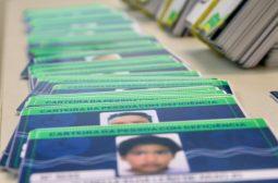 Sejusc recebe novo lote com 768 Carteiras de Identificação para a Pessoa com Deficiência